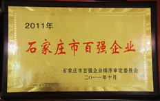 Shijiazhuang Top 100 Enterprises in 2011